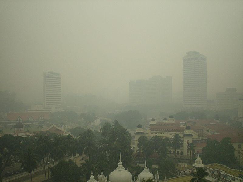 spore-haze-offer