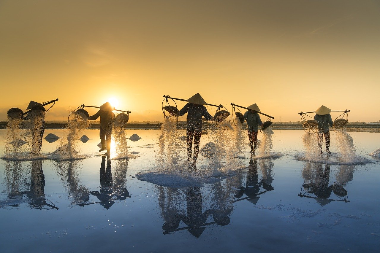Vietnam-labour-salt-harvesting-3060093_1280