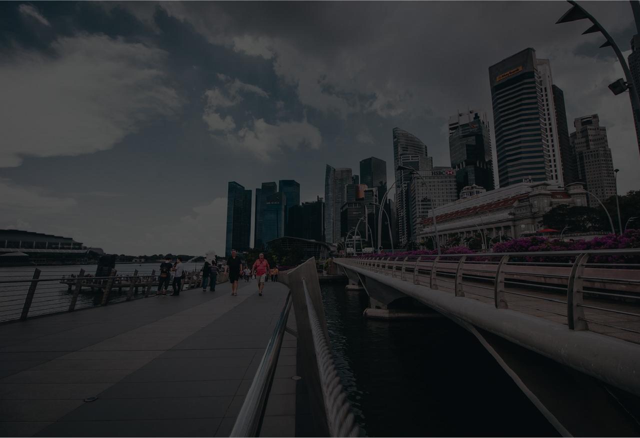 Singapore-bridge