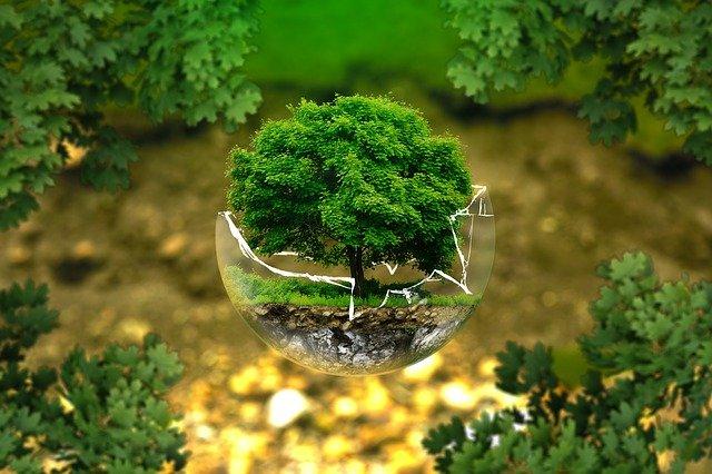 green-climate-environmental-protection-326923_640
